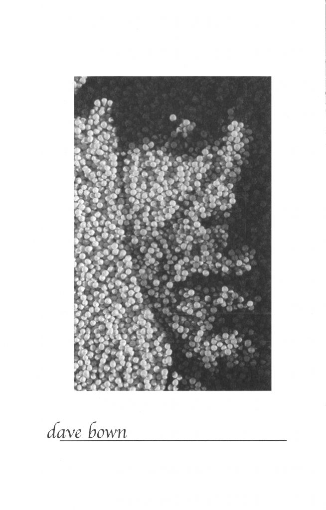 portrait of a person, done with pointilism